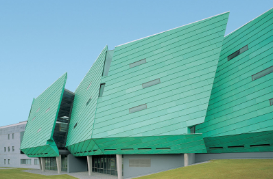 Технологический институт Мэйо